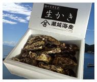 牡蠣殻付き2kg